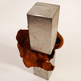 DEHYDRATED VI. Inox steel and iron. 30x13x14 cm. 2008